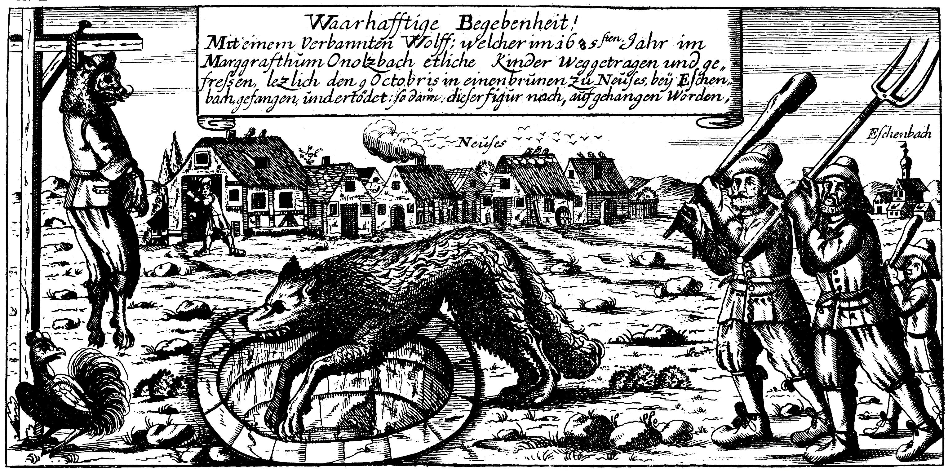 Der Werwolf von Ansbach wird bei Neuses in eine Grube getrieben. Daneben sein Leichnam am Galgen.